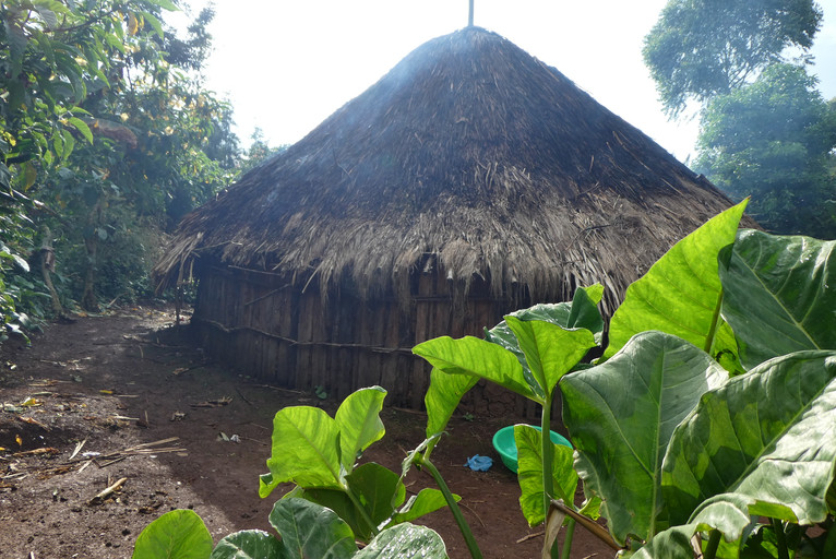 Traditional round hut in Ethiopia .JPG