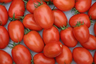 roma-tomatoes-2716569_1920.jpg