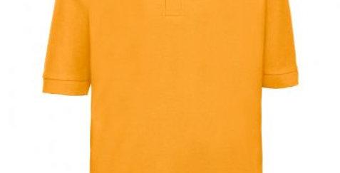 Gold Poloshirt (Overchurch Infants)