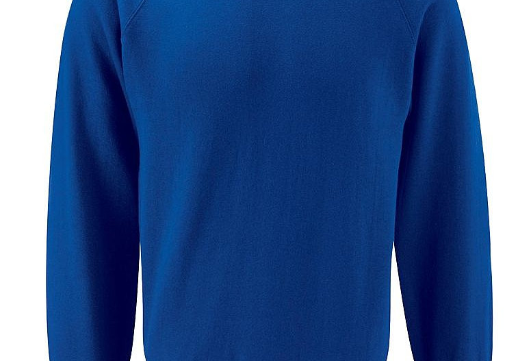 Royal Blue Sweatshirt (Lingham)
