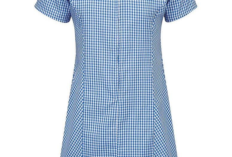Blue & White Gingham Summer Dress