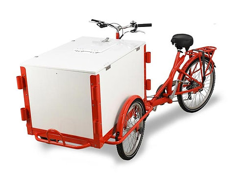Ice cream tricycle - make huge profits - FREE SHIPPING