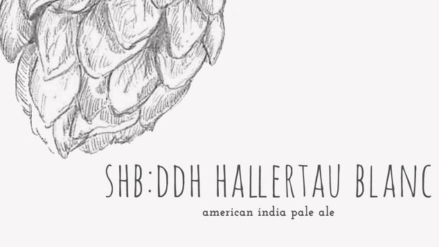 SHB: DDH Hallertau Blanc