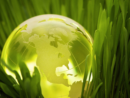 Biocombustível  substituirá o petróleo?