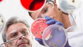 Por que realizar análises microbiológicas é tão importante?
