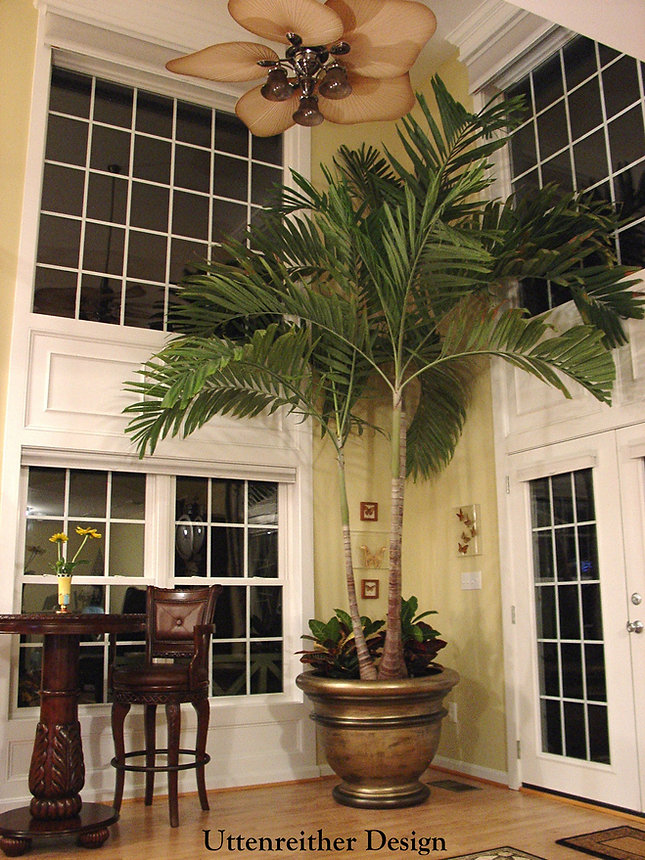 Great Room Idea, Indoor Palm Tree