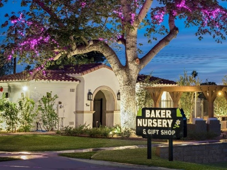The Villas at Baker Park: Homes and Lots Available in Arcadia's Hottest New Neighborhood