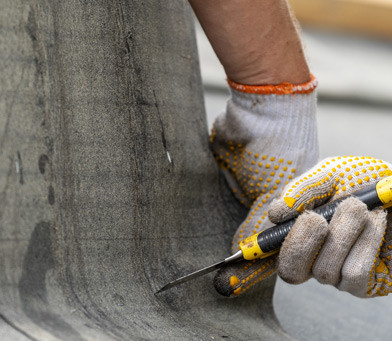 Learn How to Increase the Life of Your Single-Ply Roofing