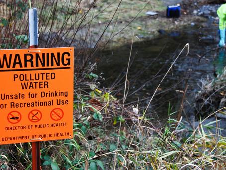 Business Perils of Environmental Negligence