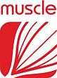 3a - Muscle Box.jpg