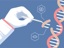 CRISPR - A Tool for the Genetic Modification of Humans