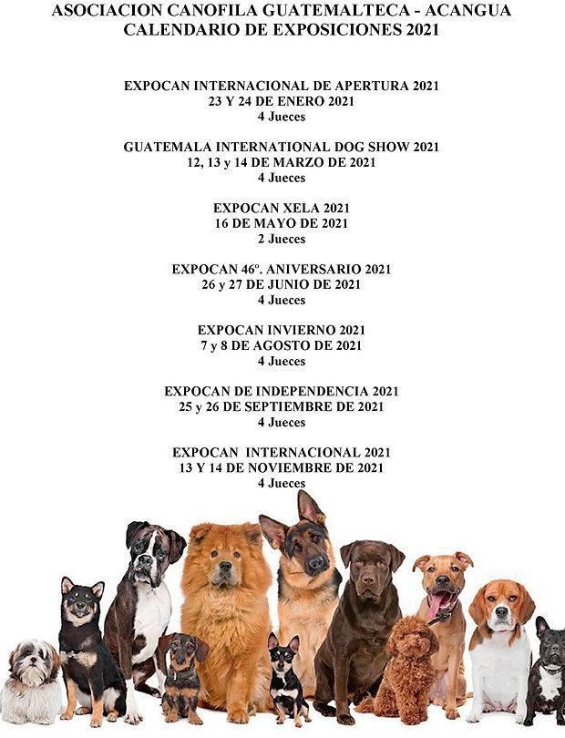 ACANGUA CALENDARIO DE EXPOSICIONES 2021.