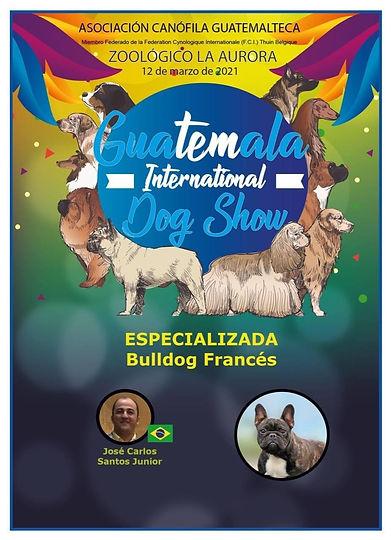 especializada bulldog frances 2021 guate