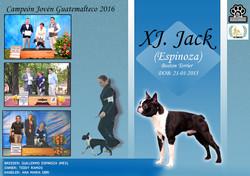 jack titulos 1