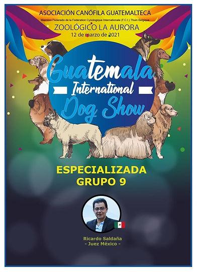 especializada grupo 9 - 2021 Guatemala .