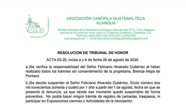 suspension Feliciano Alvarado Guitierrez - Acangua
