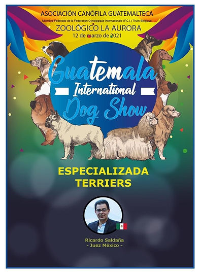 Especializada terriers Guatemala 2021 .j