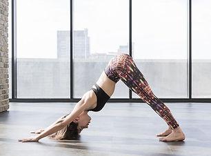 vinyasa-yoga-poses-256403-1525202831142-