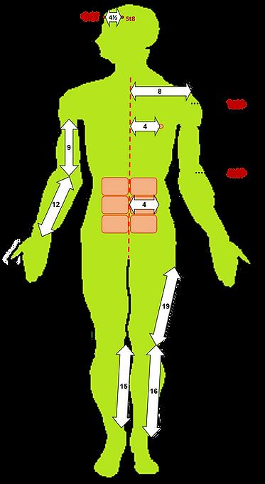 מפת צונים ברק גומבוש