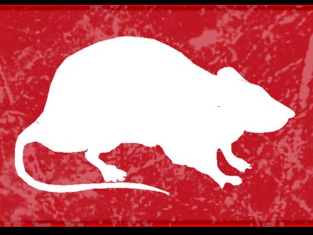 2020 שנת העכברוש