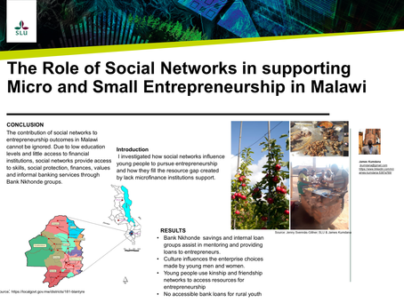 The Role of Social Networks in Supporting Micro and Small Entrepreneurship in Malawi