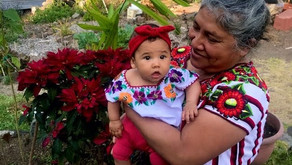 Interview with Mayan Comadrona (Midwife) Ester