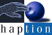 HAPTION_logo_big.jpg