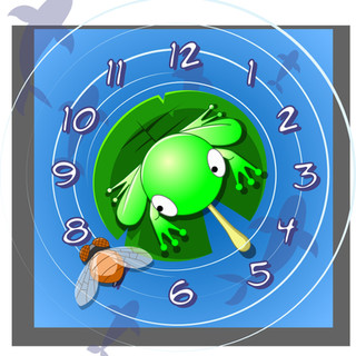 FROG WATCH FACE
