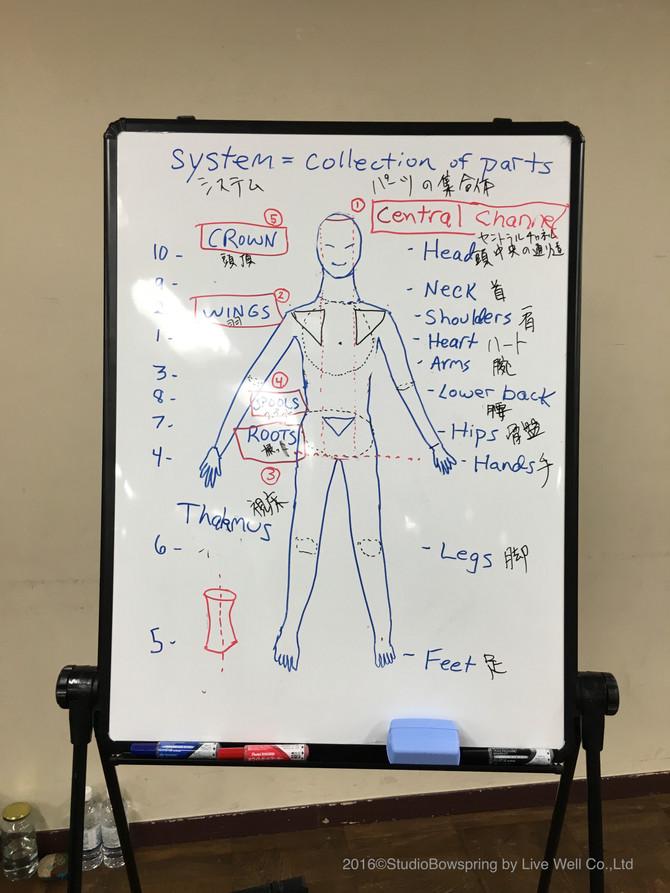 セラピューティックトレーニング 1