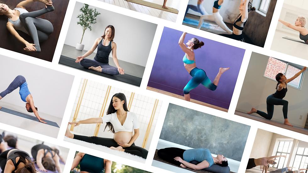 perfect yoga 200 瞑想からBowsPRINGまで.png