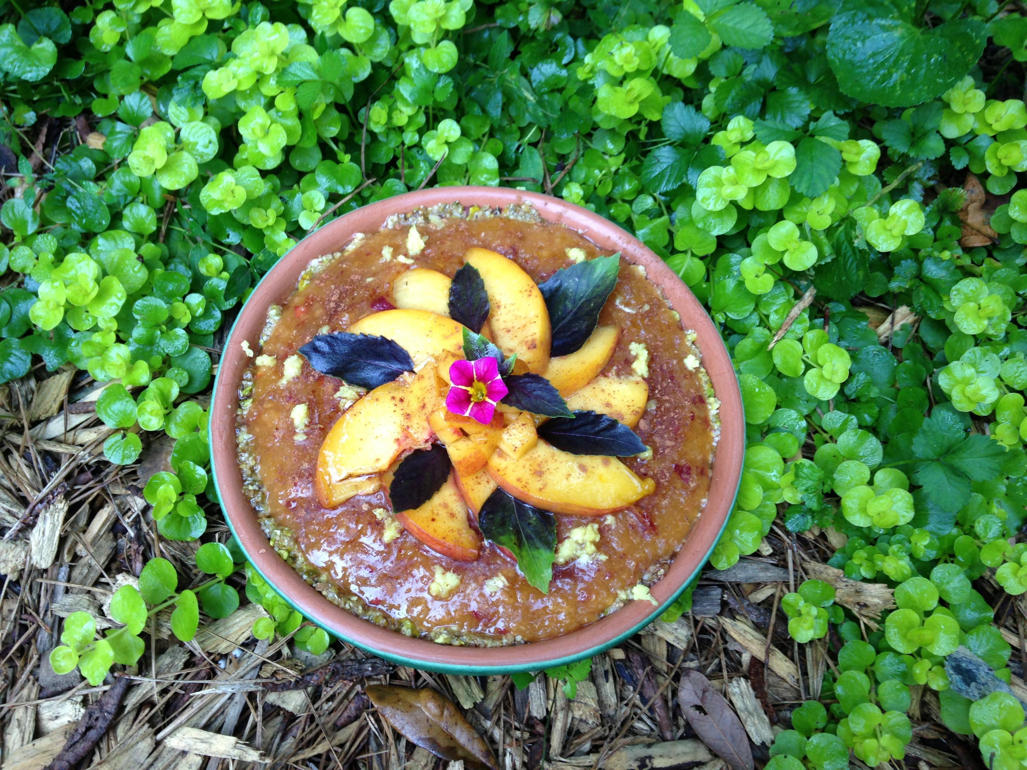 Raw Vegan Nectarine Pie