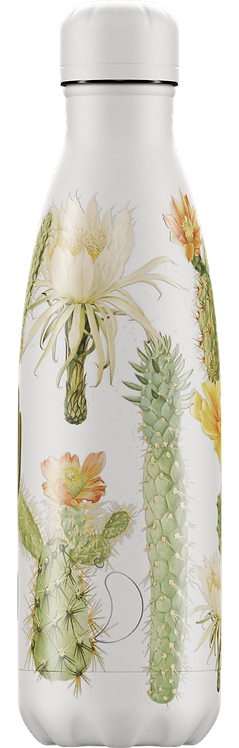Chilly Trinkflasche Botanischer Kaktus