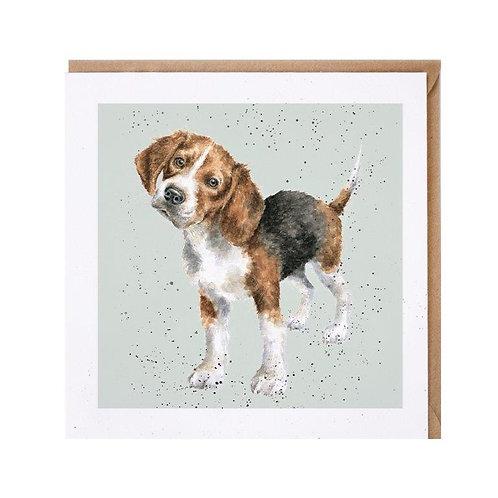 Tierkarten Wrendale Foxhound