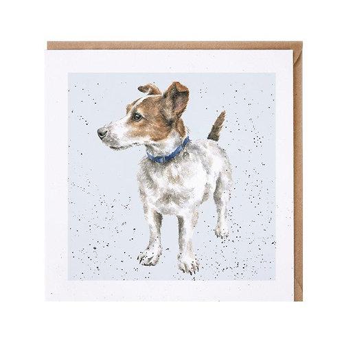 Tierkarten Wrendale Fox Terrier B