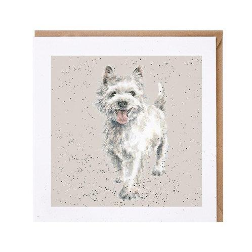 Tierkarten Wrendale Westhighland Terrier
