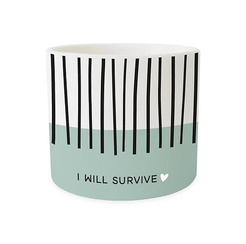 Blumentopf I will survive