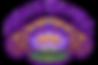 oh_logo_transparent_bg.png