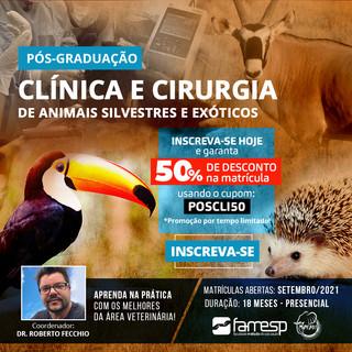 post-pos-veterinaria-clinica-cirurgia-an