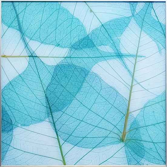 Impressão em vidro - Folha verde