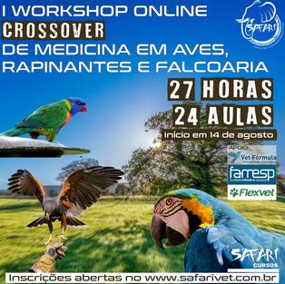 Medicina em Aves e Rapinantes