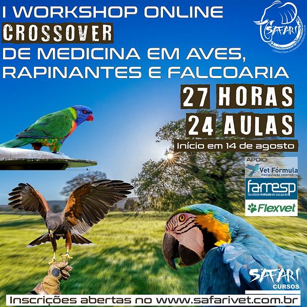 PROJETO CROSSOVER PRIMEIRO.png