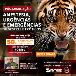 post-anestesia-urgencias-emergencias-silvestres-exoticos-promocao-matricula.jpg
