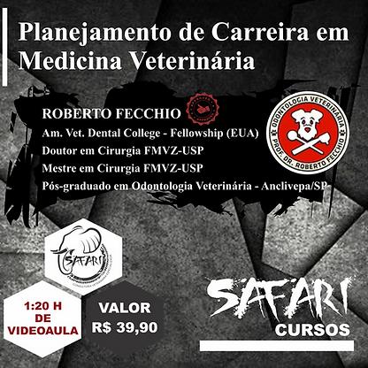 PLANEJAMENTO DE CARREIRA MV