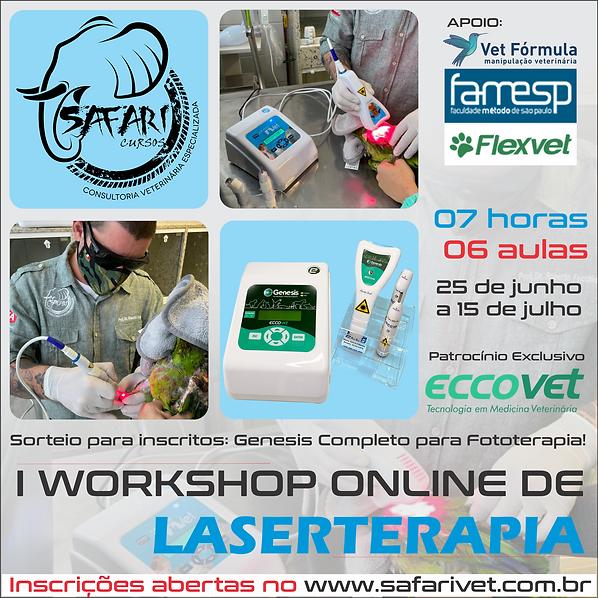 I Workshop Online de Laserterapia e Apli