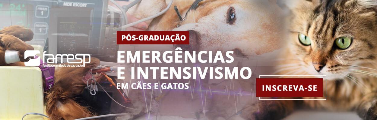 famesp-pos-graduacao-emergencias-intensi