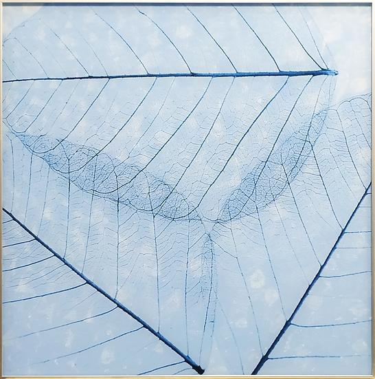 Impressão em vidro - Folha azul