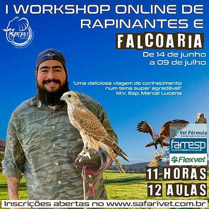 I Workshop de Rapinantes e Falcoaria