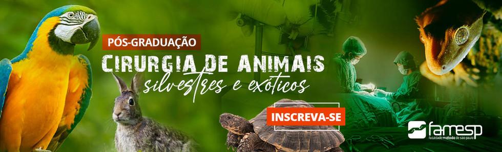 Pós em Cirurgia de Animais Silvestres e Exóticos