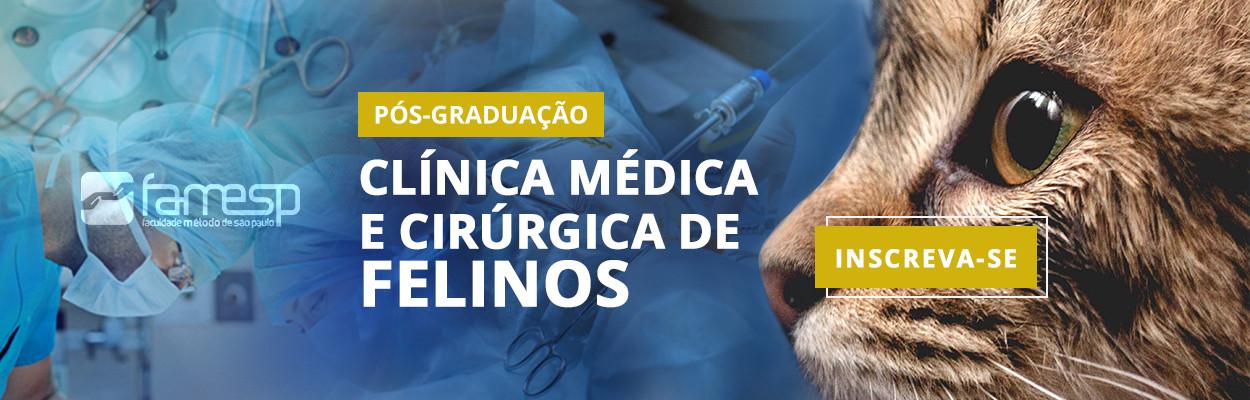 pos-graduacao-clinica-medica-cirurgica-f