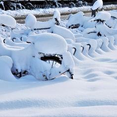 snow-5920842.jpg